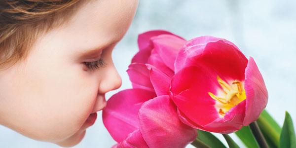 Kind riecht an Blüte