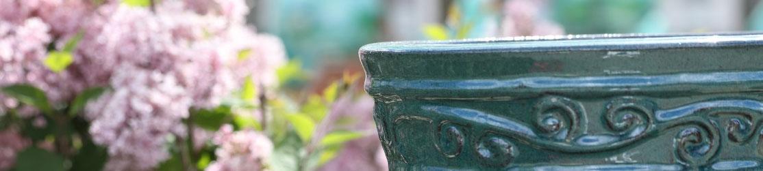 Tontopf vor Pflanzen