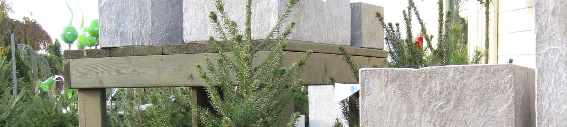 Weihnachtsbäume in der Baumschule Dietrich